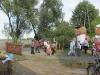is_dozynki-2011-012