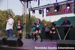 Skulsk (1)